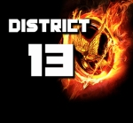 district13 (1)